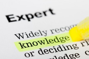 definition of expert witness