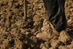 tilled soil