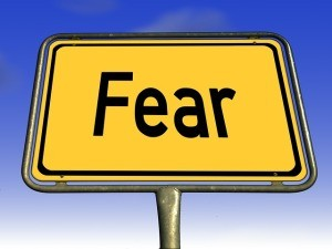 What would you do if you were not afraid?
